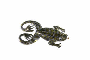 Jenzi Jack's Rubber Froggy Grau Gold Oberflächenköder