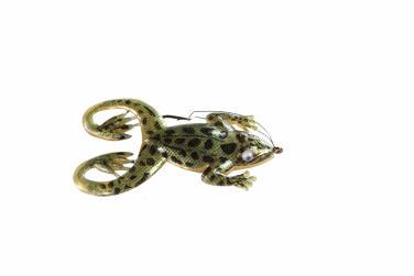 Jenzi Jack's Rubber Froggy Gold Schwarz Oberflächenköder